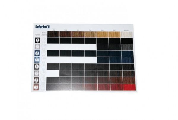 RefectoCil gedruckte Farbkarte Colour Match A6