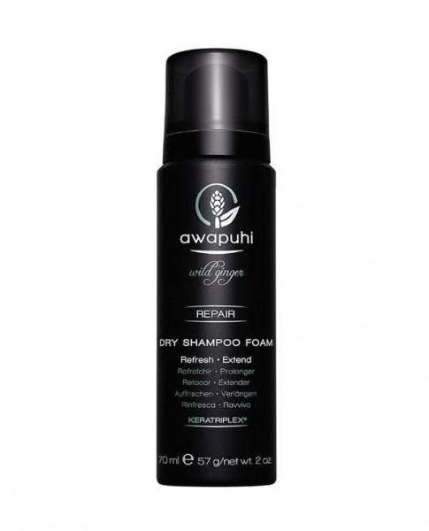 Paul Michell awapuhi wild ginger Dry Shampoo Foam Trockenshampoo